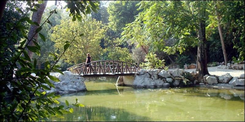 Μικρή γέφυρα στον εθνικό κήπο της Αθήνας