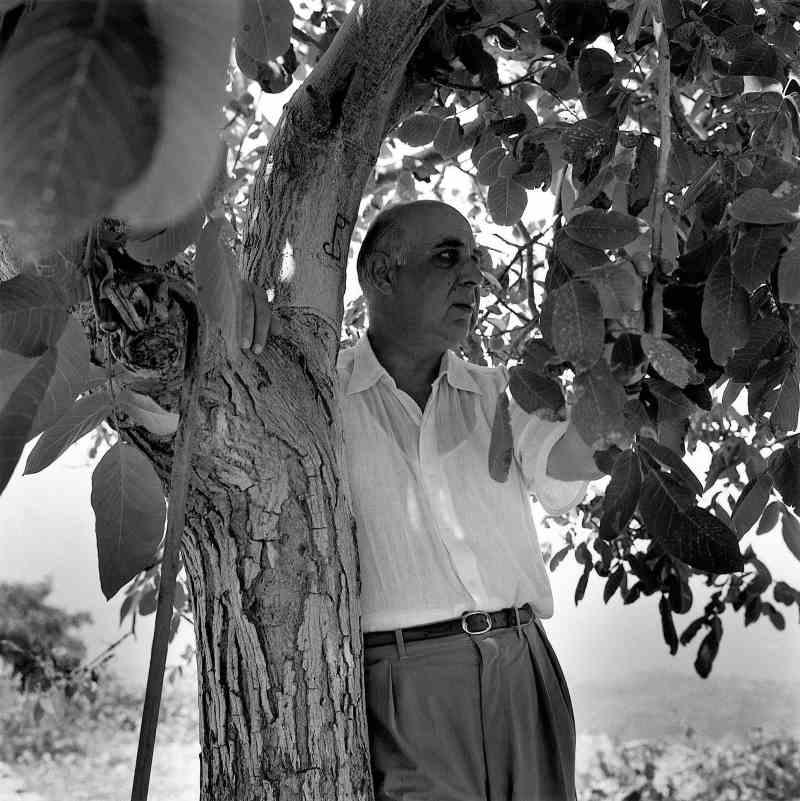 Γιώργος Σεφέρης: Ο Νομπελίστας ποιητής της «χώρας των παράλληλων μονοδρόμων»