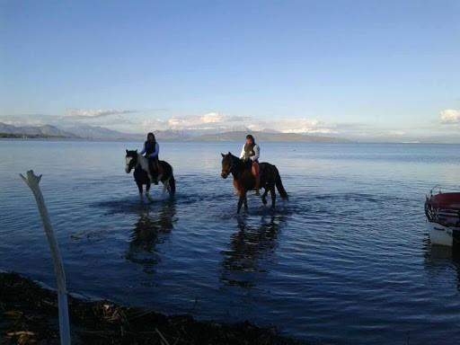 Βόλτα ιππασίας κατά μήκος των ποταμών της Πάργας.