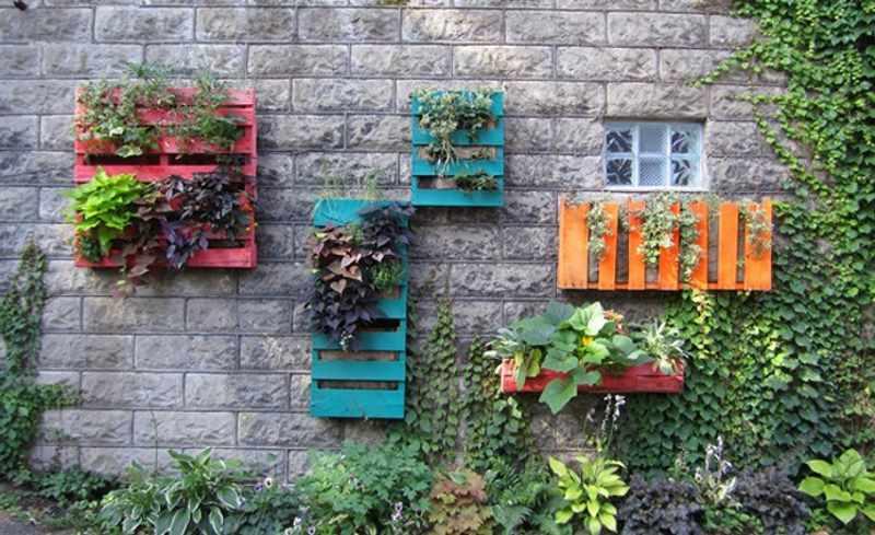 Κηπουρική: Μάθετε τα νέα trends για το 2017