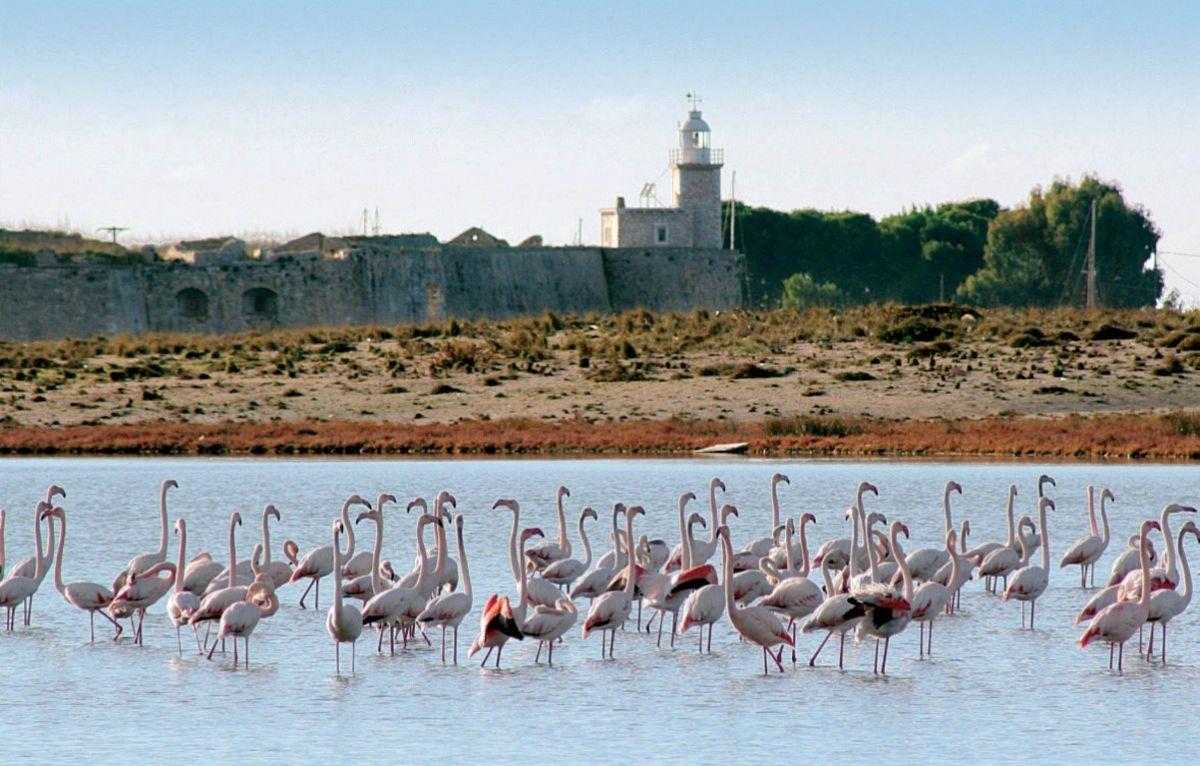 Το Κάστρο της Αγίας Μαύρας στη Λευκάδα