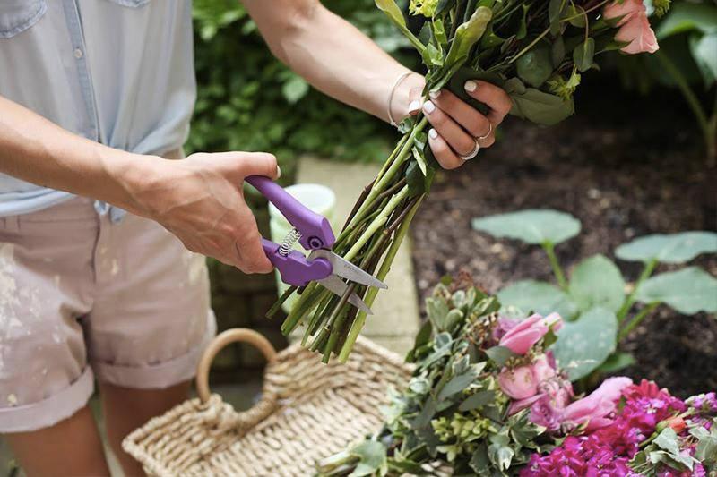 Λουλούδια στο σπιτικό μας - kladema