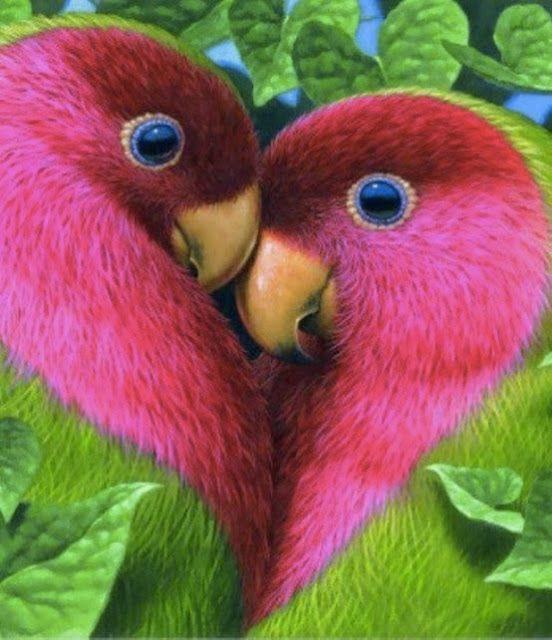 lovebirds: Τα πουλιά της αιώνιας αγάπης