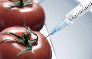 Μάθε ποιες είναι οι πιο καρκινογόνες τροφές! gmo food