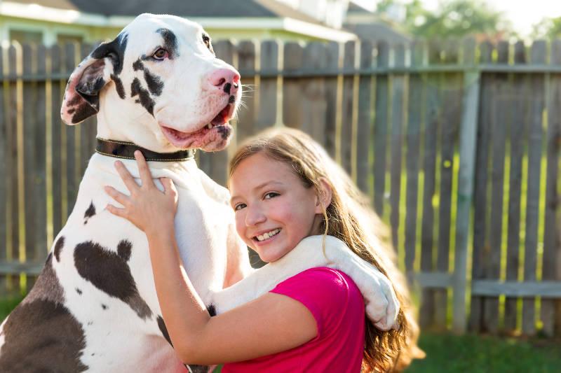 Μικρό παιδί, Μεγάλο σκυλί: Γιατί είναι καλό να συμβιώνουν! dog - girl