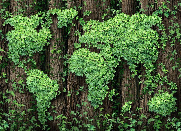 Πράσινη οικονομία: Η Ελλάδα θέλει, η κοινωνία μπορεί;