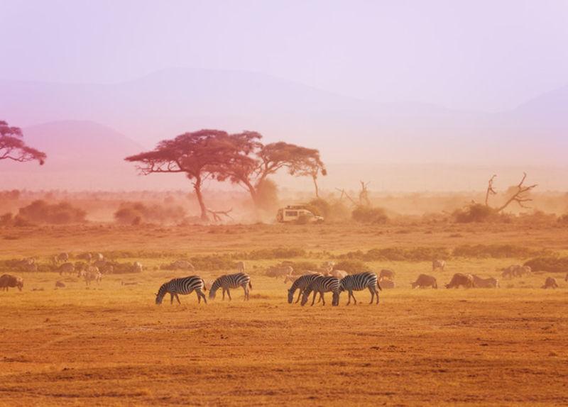 Ταξίδι στην Κένυα: 7 μέρες στην άγρια ζωής σε μοναδικά καταλύματα