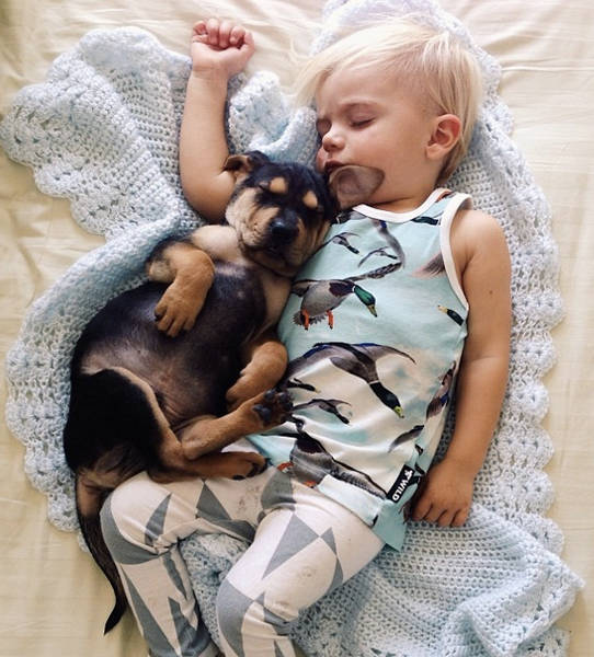 to σκυλί σου και το παιδί σου