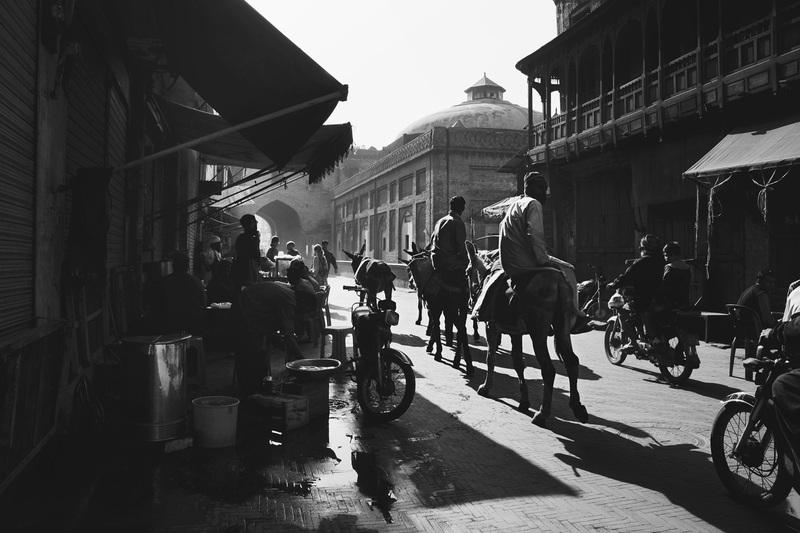 travel photographer 2020: Άνθρωποι και γαιδουράκια σε εμπορικό δρόμο του Larmour